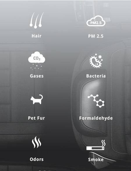 Car Air Purifier Nature Breeze For Your Car Air